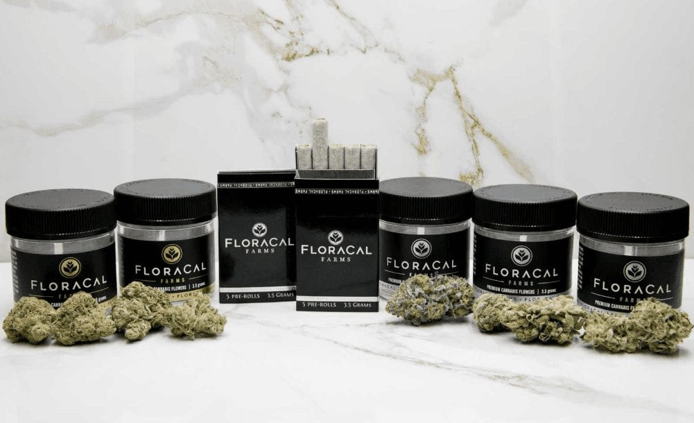 Floracal Cannabis Containers