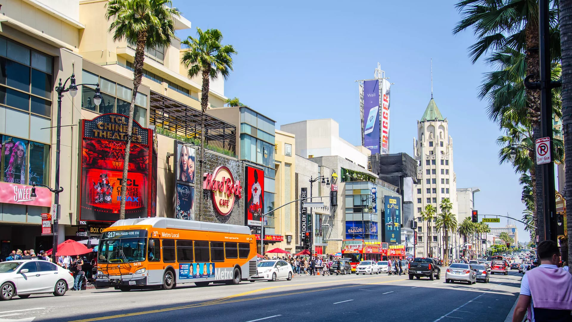 marijuana dispensaries in hollywood